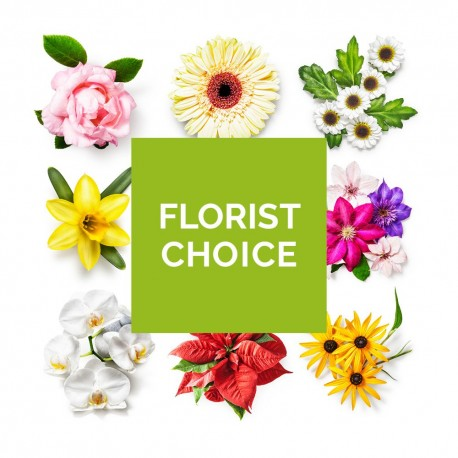 Florist Choice Flowers